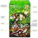 compost_26754