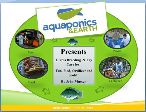 Tilapia Breeding and Farming and Aquaculture Fish Farming Webinar